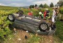 POL-PDKH: PKW-Fahrer landet in Weinbergen